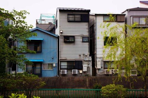 Alicia Japón537