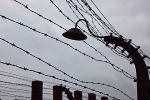 Auschwitz, Alicia Pérez Gil, viajar